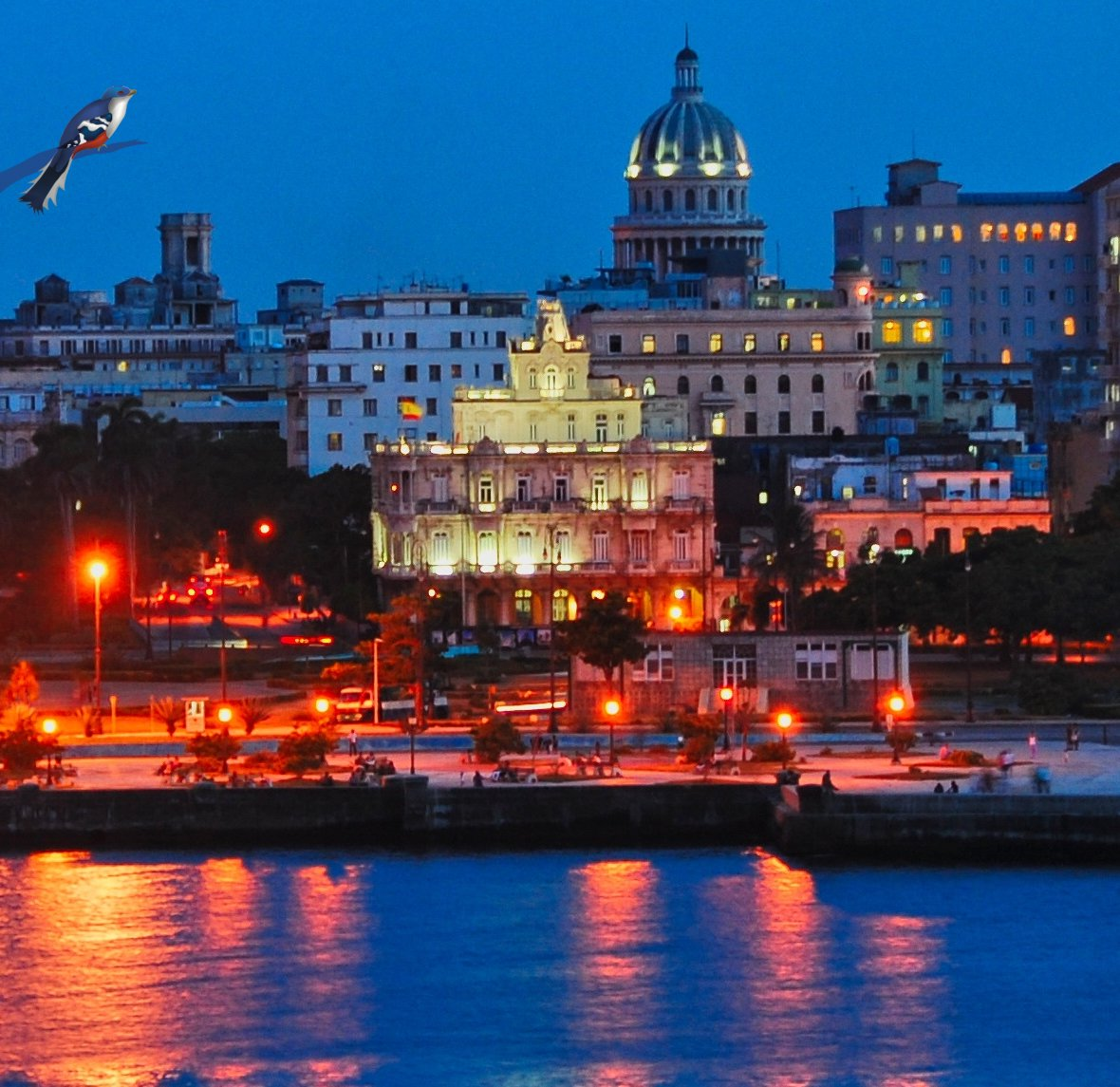 Vacation in Havana, Cuba